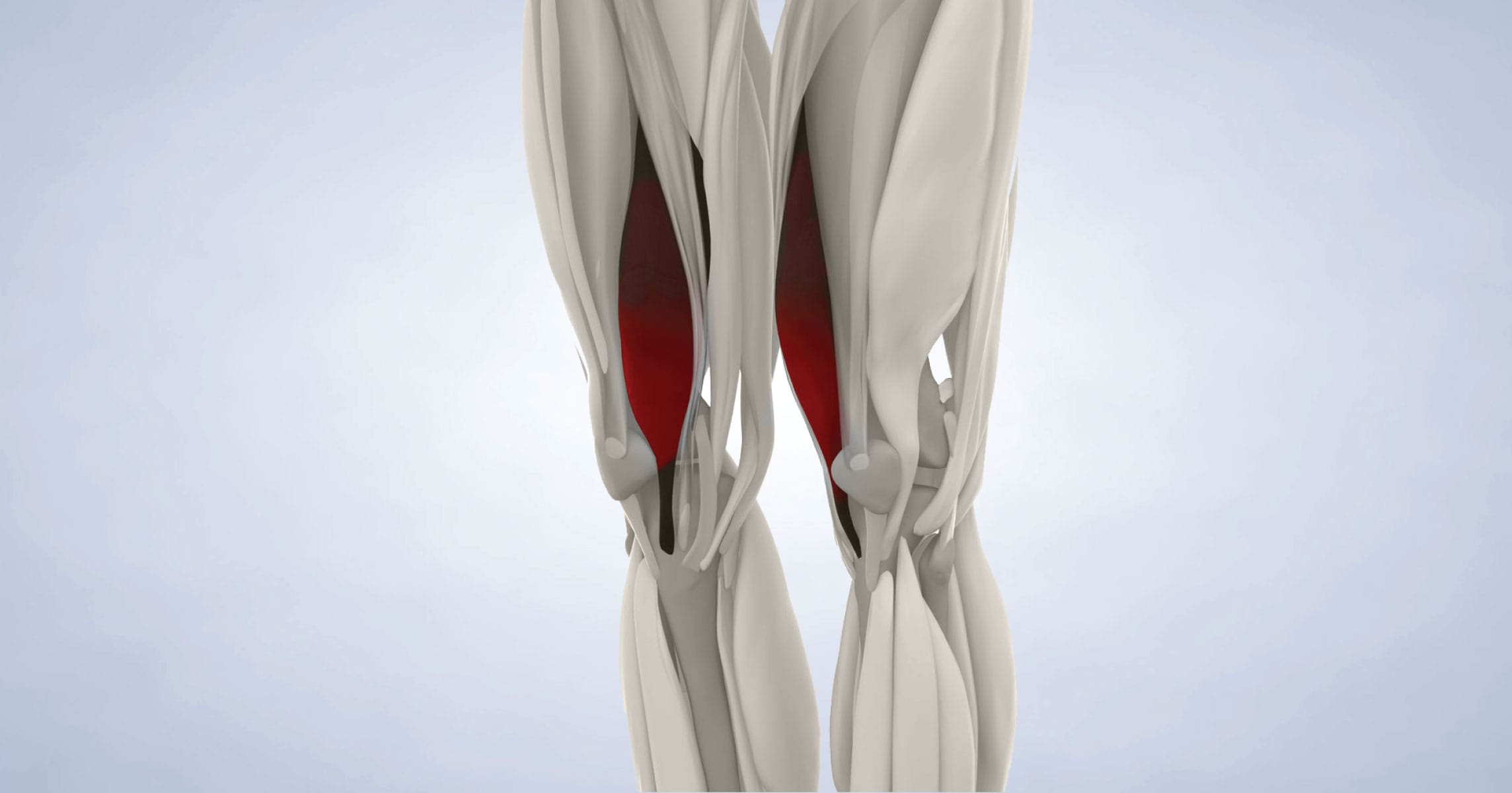 Quadriceps Tendon Repair in Marin, CA